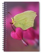 All You Need Is Heart Spiral Notebook