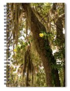Allamanda And Oak Tree Spiral Notebook