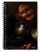Allegory Of The Four Elements Spiral Notebook