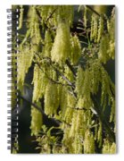 Allergies Spiral Notebook