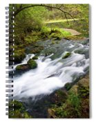 Alley Spring Branch Spiral Notebook