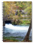 Alley Spring Spiral Notebook