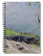 Alligator And Heron Spiral Notebook