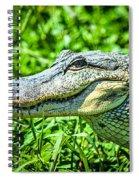 Alligator  Spiral Notebook