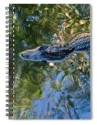 Alligator Stalking Spiral Notebook