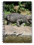 Alligator Surprise Spiral Notebook