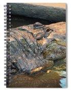 Crocodile Time  Spiral Notebook