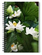 Sacred Lotus Plant Spiral Notebook