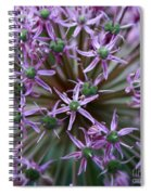 Allium Macro Spiral Notebook