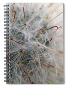 Allium Sativum Spiral Notebook
