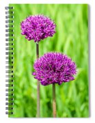 Alliums Spiral Notebook