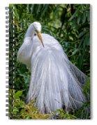 Alluring In White Spiral Notebook