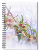 Almond Blossoms Spiral Notebook