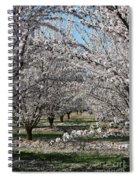Almond Orchard Spiral Notebook
