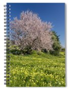 Almond Tree In Meadow Spiral Notebook