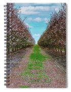 Almond Trees Of Button Willow Spiral Notebook