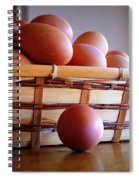 Almost All My Eggs In One Basket Spiral Notebook