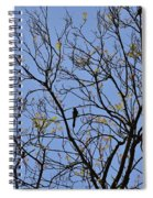 Almost Bare With Birds II Spiral Notebook
