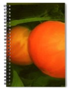 Almost Ready Spiral Notebook
