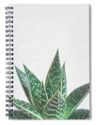 Aloe Tiki Spiral Notebook