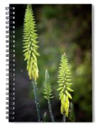 Aloe Vera Blooms Spiral Notebook