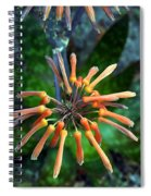 Aloe Vera Spiral Notebook