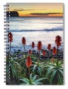 Aloe Vera In Flower At The Seaside Spiral Notebook