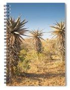 Aloe Vera Trees Botswana Spiral Notebook
