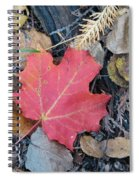 Alone In The Woods Spiral Notebook