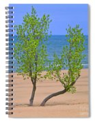 Alone On The Beach Spiral Notebook