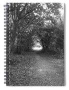 Along A Woodland Path Spiral Notebook