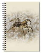 Along Came A Spider Spiral Notebook