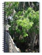 Along Florida Boardwalk Spiral Notebook