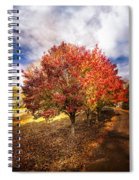 Along The Lane Spiral Notebook
