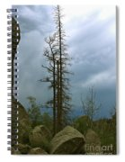 Along The Needles Highway Spiral Notebook