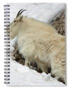Along The Rock Spiral Notebook