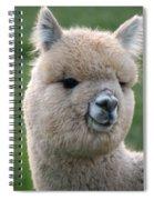 Alpaca Smile Spiral Notebook