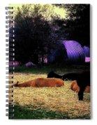 Alpacan Twilight Spiral Notebook