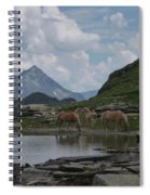 Alps' Horses Spiral Notebook