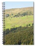 Alpine Forest Landscape.  Spiral Notebook