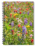 Alpine Glory In Canada Spiral Notebook