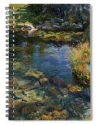 Alpine Pool Spiral Notebook