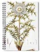 Alpine Thistle Spiral Notebook