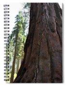 Alta Vista Giant Sequoia Spiral Notebook