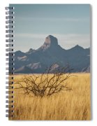 Altar Valley  Spiral Notebook