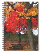 Altered State In The Park Spiral Notebook