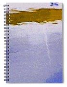 Alternate Reality 13-3 Spiral Notebook