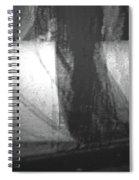 Alternate Reality 4-2 Spiral Notebook