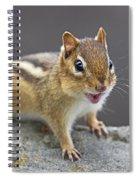 Alvinnn... Spiral Notebook