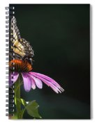 Always June Spiral Notebook